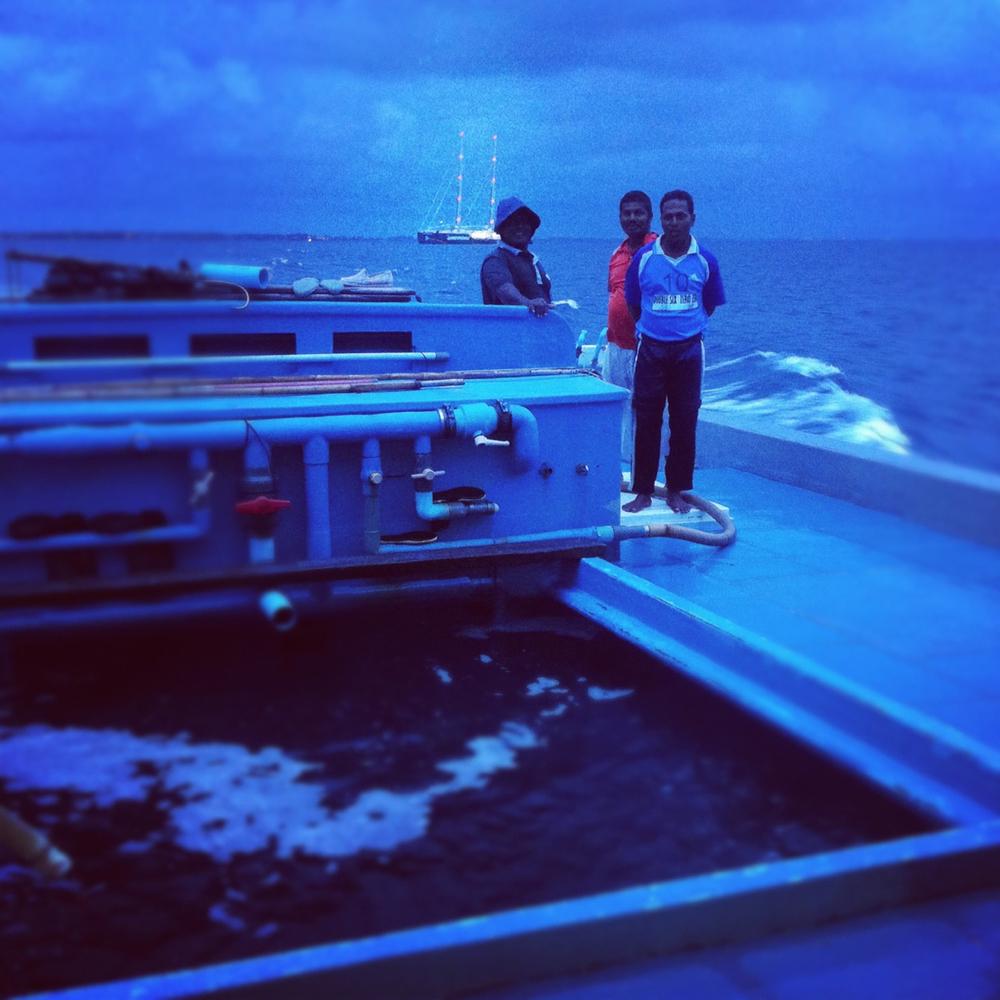 NT_IG_Maldives_01.jpg