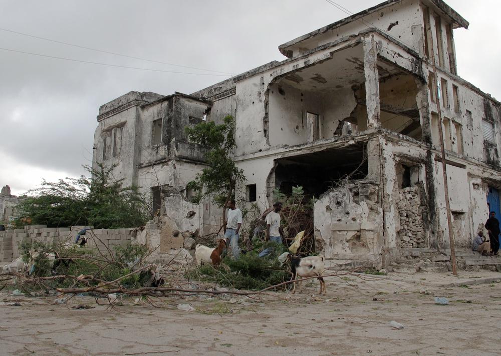 Livestock.  Shangaani, Mogadishu, Somalia. August 2012.