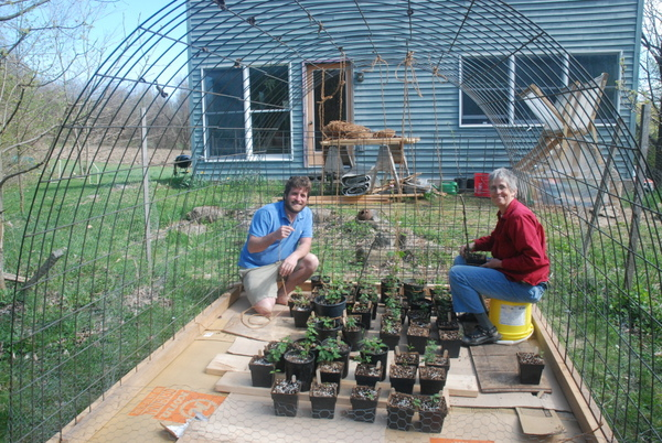 Our open-air hoop house was great in early May. Here are Saul and Fran stringing the hops up with coconut coir.