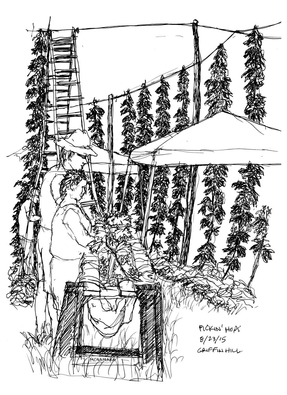 Drawing courtesy of master picker Bob McNamara