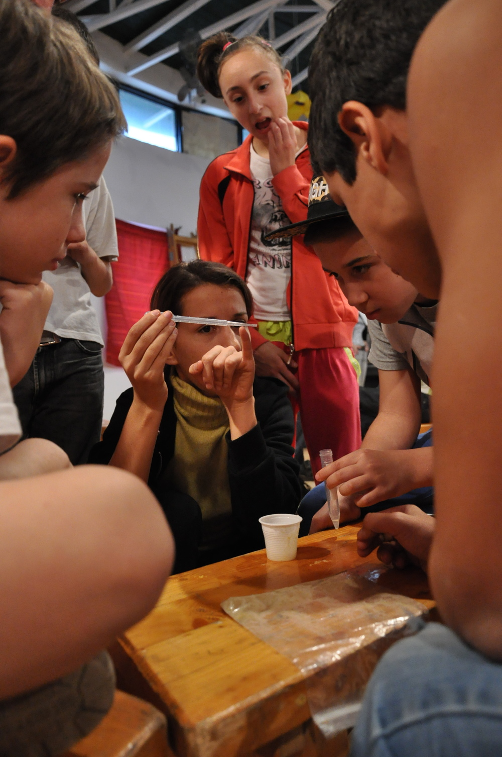DNA extraction, Burratino vocational school for minorities