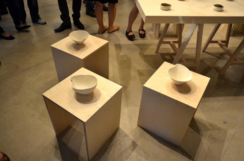 'Elementals' Sullivan Galleries installation  Graduate Design Thesis Exhibition 2013