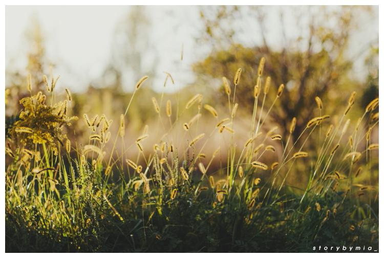 2014-10-26_0010.jpg