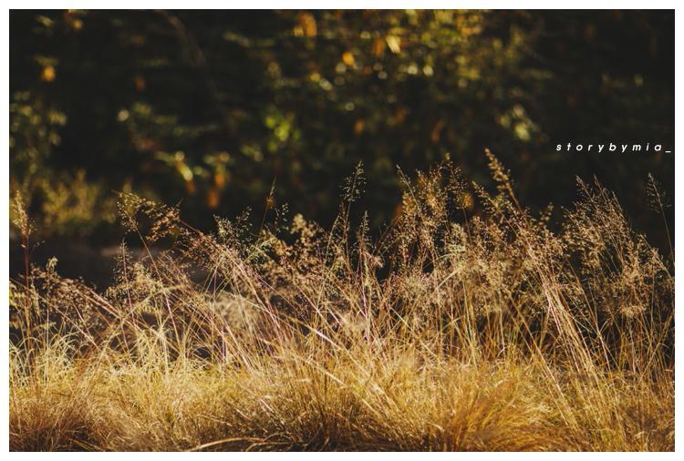 2014-11-30_0020.jpg