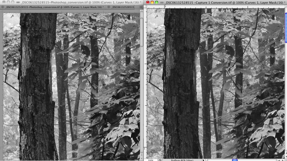 Left: Color Capture 1 export and Photoshop Black and White Adjustment Layer Conversion Right: Capture 1 Black and White Conversion and Export