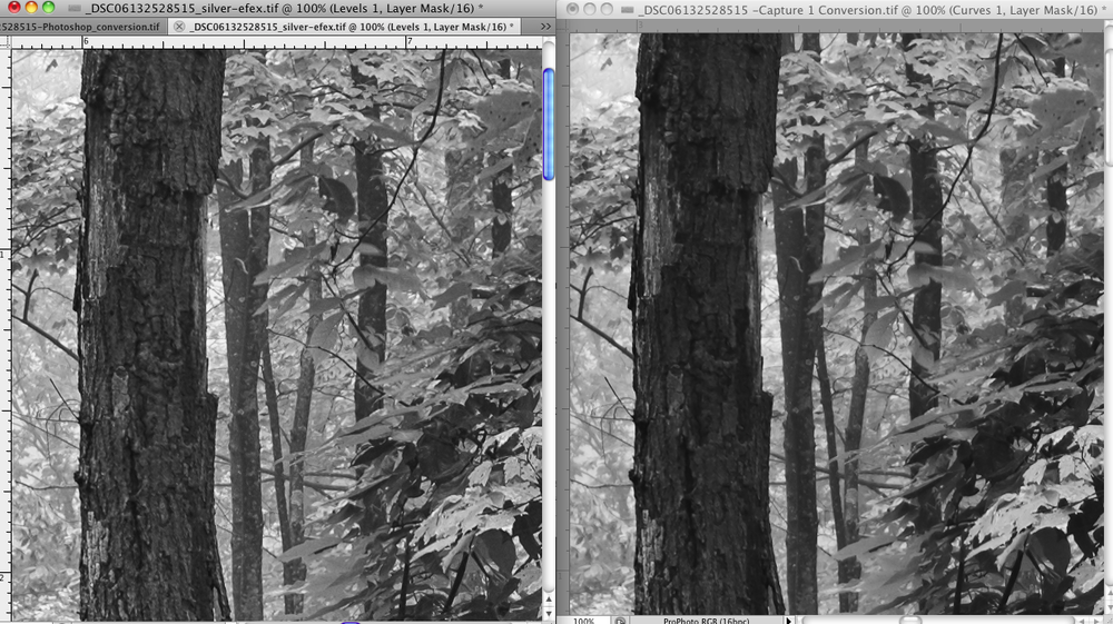 Left: Color Capture 1 export and Silver Efex Pro Conversion Right: Capture 1 Black and White Conversion and Export