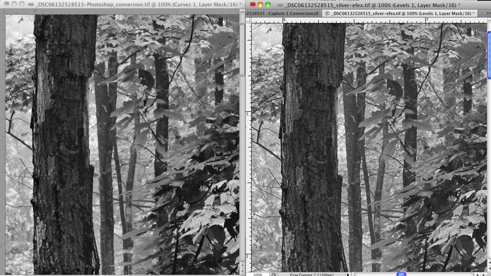 Left: Color Capture 1 export and Photoshop Black and White Adjustment Layer Conversion Right:Color Capture 1 export and Silver Efex Pro Conversion