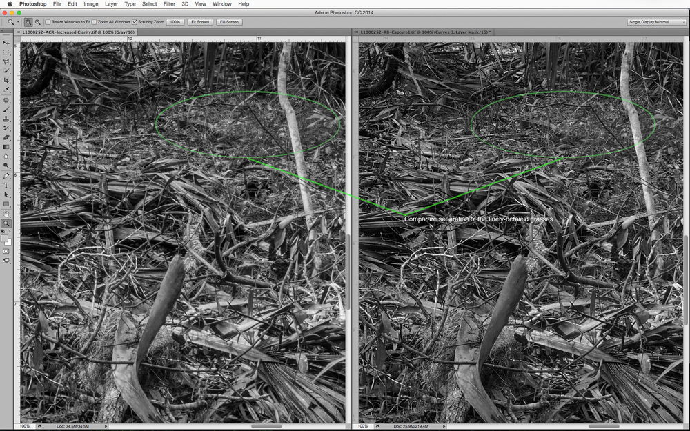 Adobe Camera Raw on left and Capture 1 Pro 8 and the right. 100% pixel view with no additional sharpening in Photoshop.