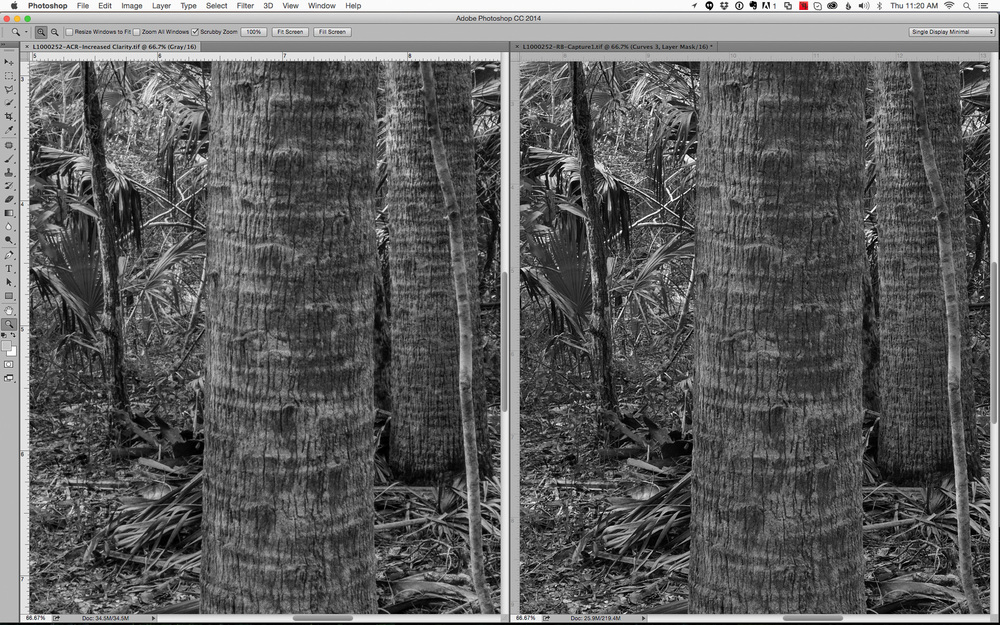 Adobe Camera Raw on left and Capture 1 Pro 8 and the right. 66.67% pixel view with no additional sharpening in Photoshop.