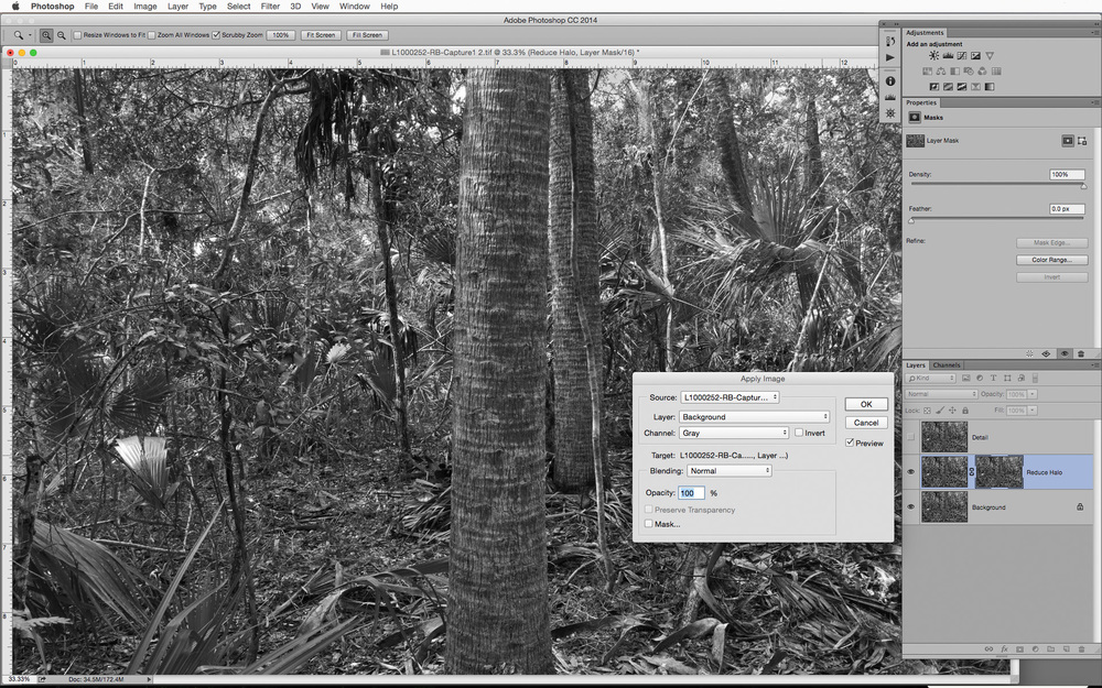 Apply Image settings to create a luminosity mask based on the tones in the background layer