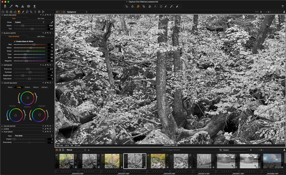 Capture One black and white conversion after.jpg