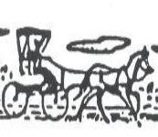 Hornes Buggy Rides.jpg