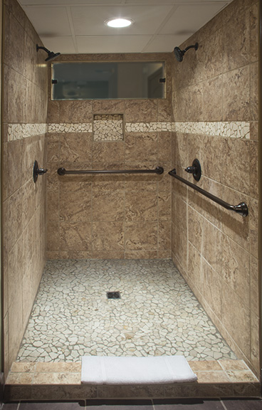 EM-LargeSuite-Shower.jpg