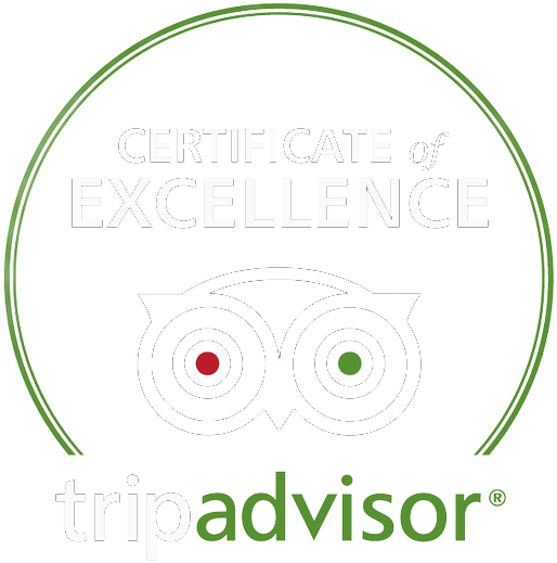 certificate-of-excellence-2017.png