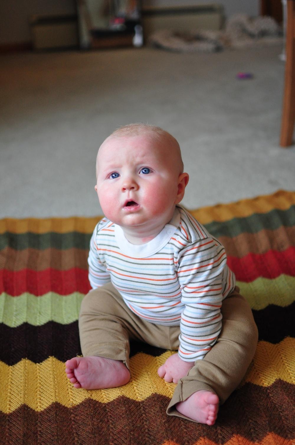 Arlo: 6 months!