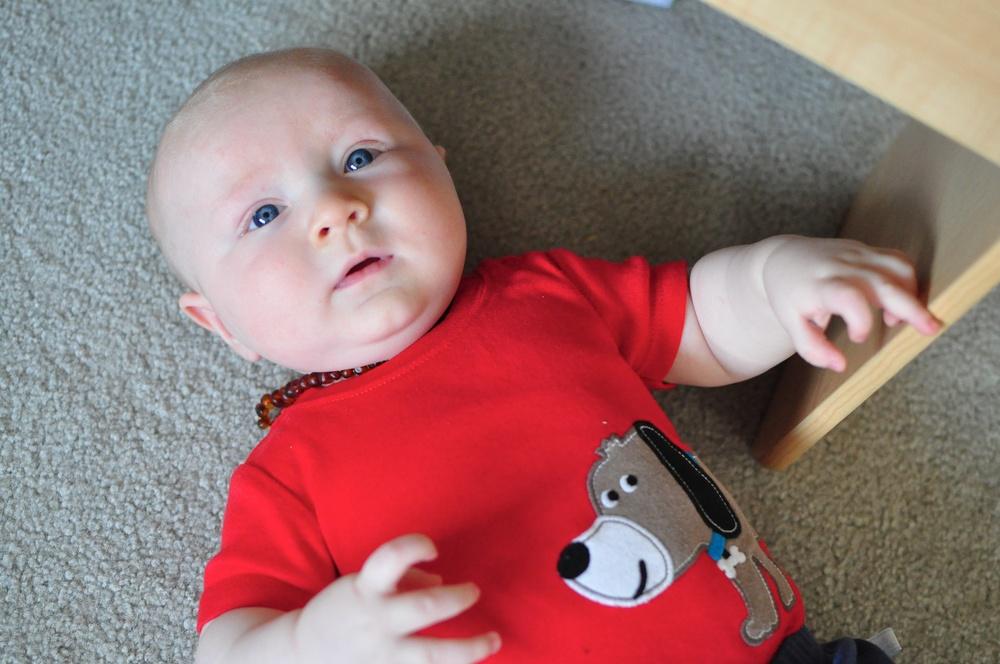 Arlo: 4 months!