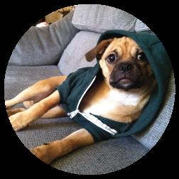 Chug Life. Rudie rocking an AA hoodie, 4.5 months