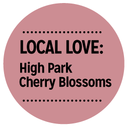 local_love_high_park.png