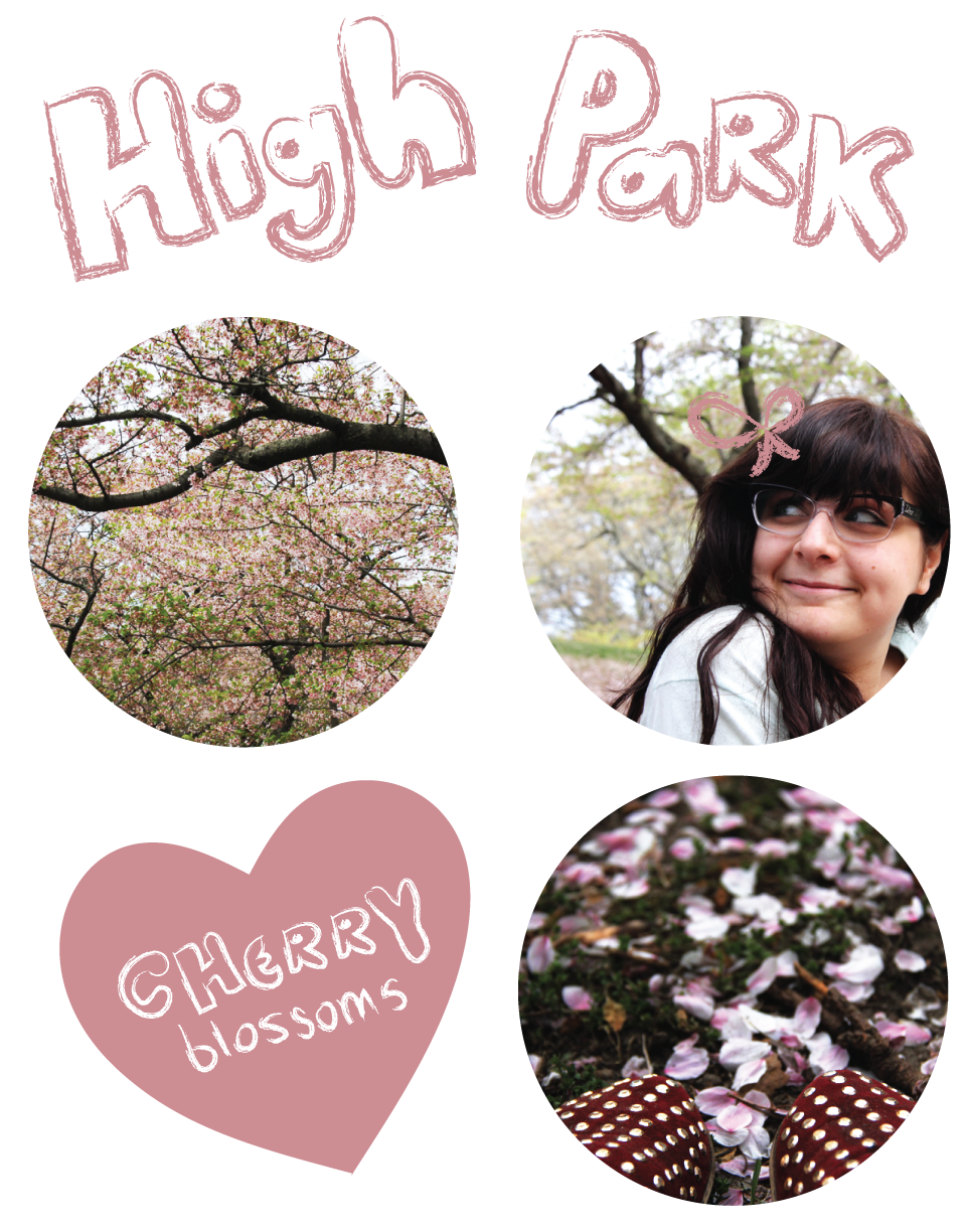 high_park_blossoms_post.png