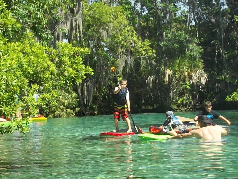 Crystal River Tour Photos Paddleboard And Kayak In