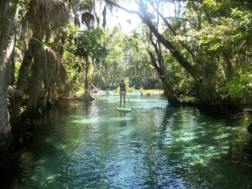 Prices Paddleboard And Kayak In Crystal River Florida