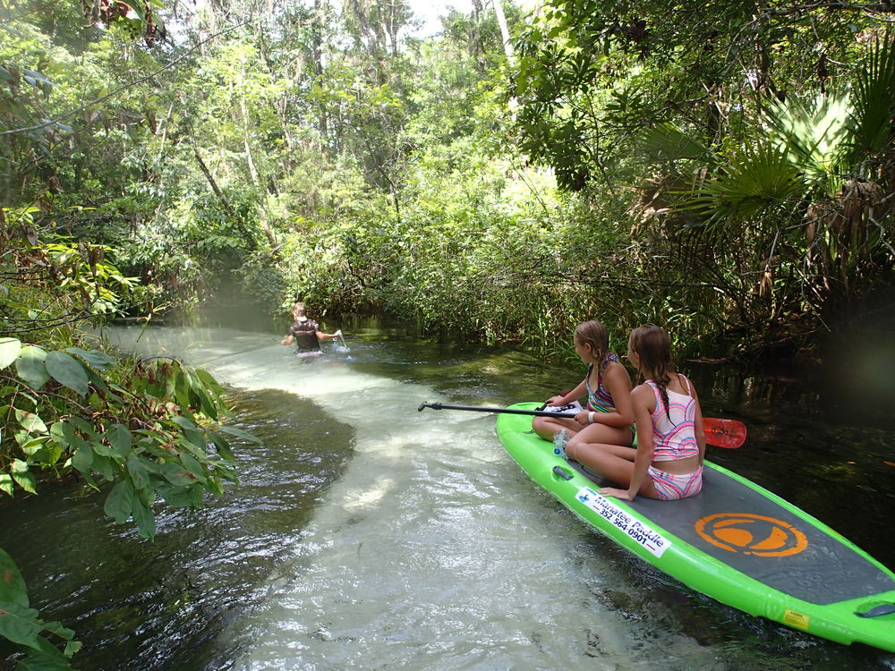 Rainbow River Tour Paddleboard And Kayak In Crystal