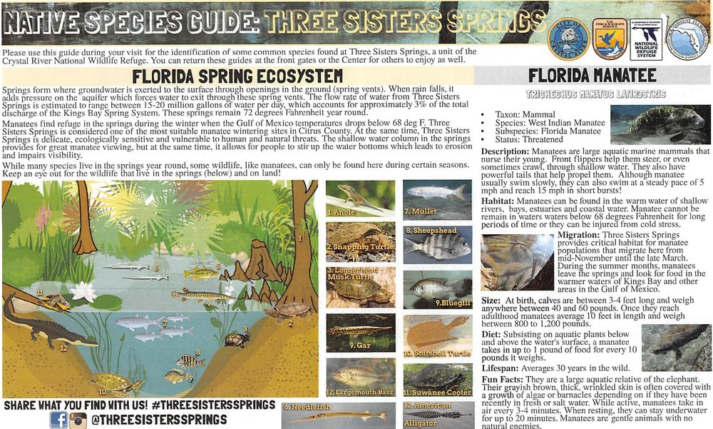 NativeSpeciesGuide-page-0.jpg