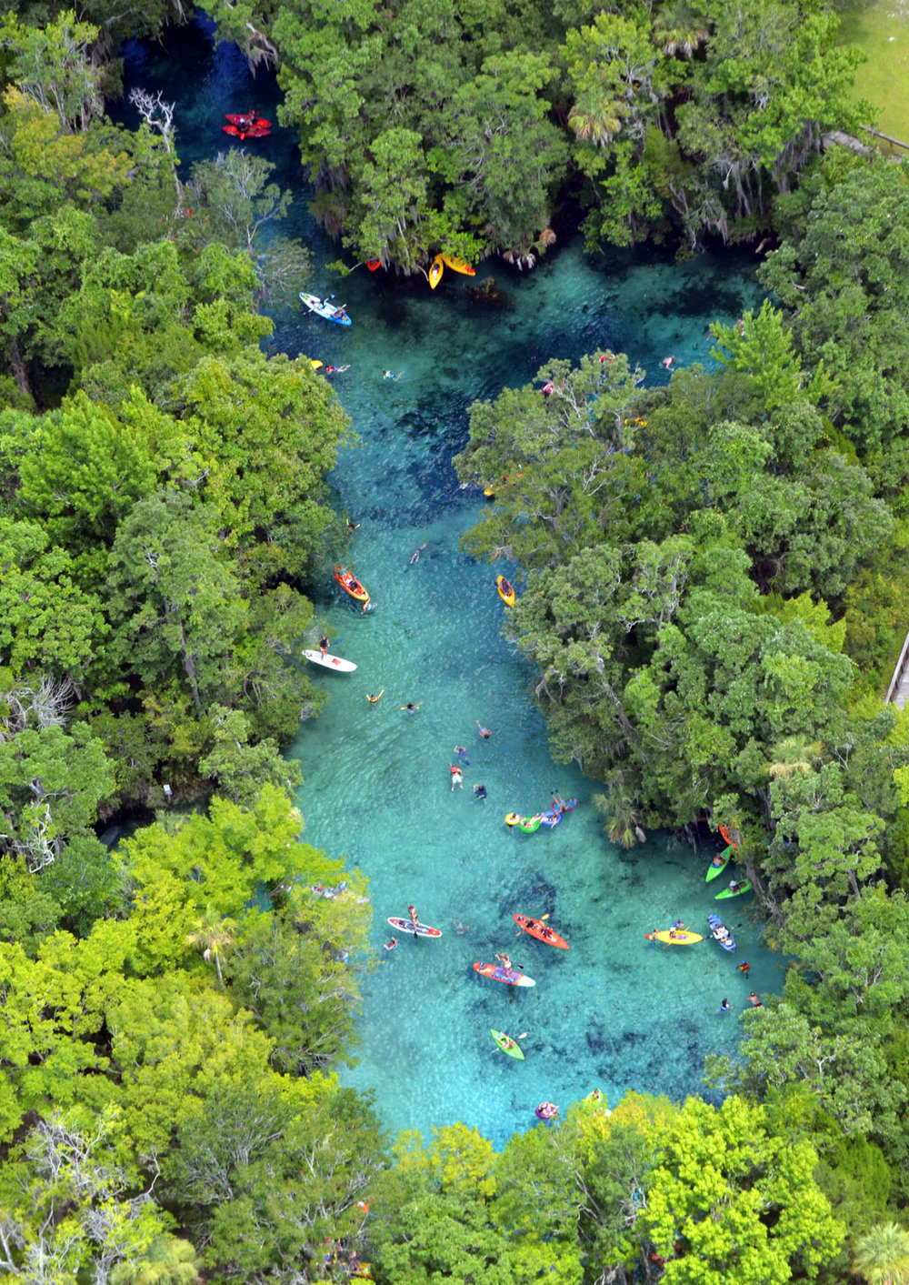 Three Sisters Springs - Summer Photo by Matt Beck, photo editor at the Citrus County Chronicle.
