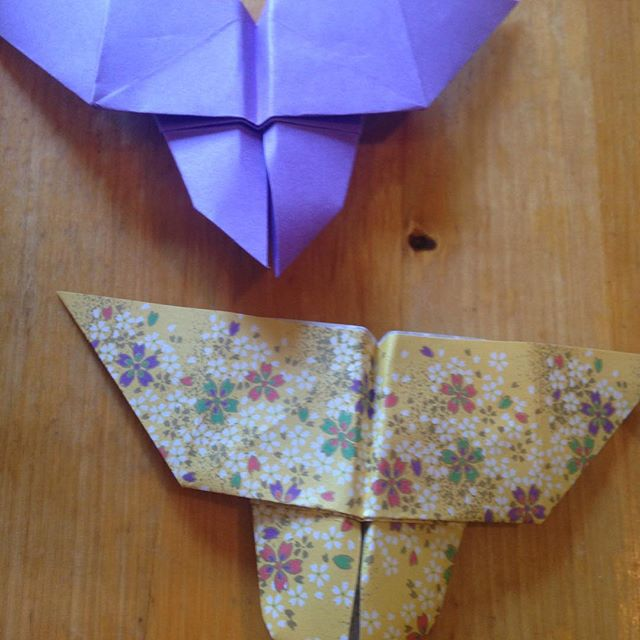 Origami Butterflies made by Candy Carleton. Prop ideas for The Heart of Shahrazad #props #origami #create #newplay #opera #acting #harp #pittsburgh