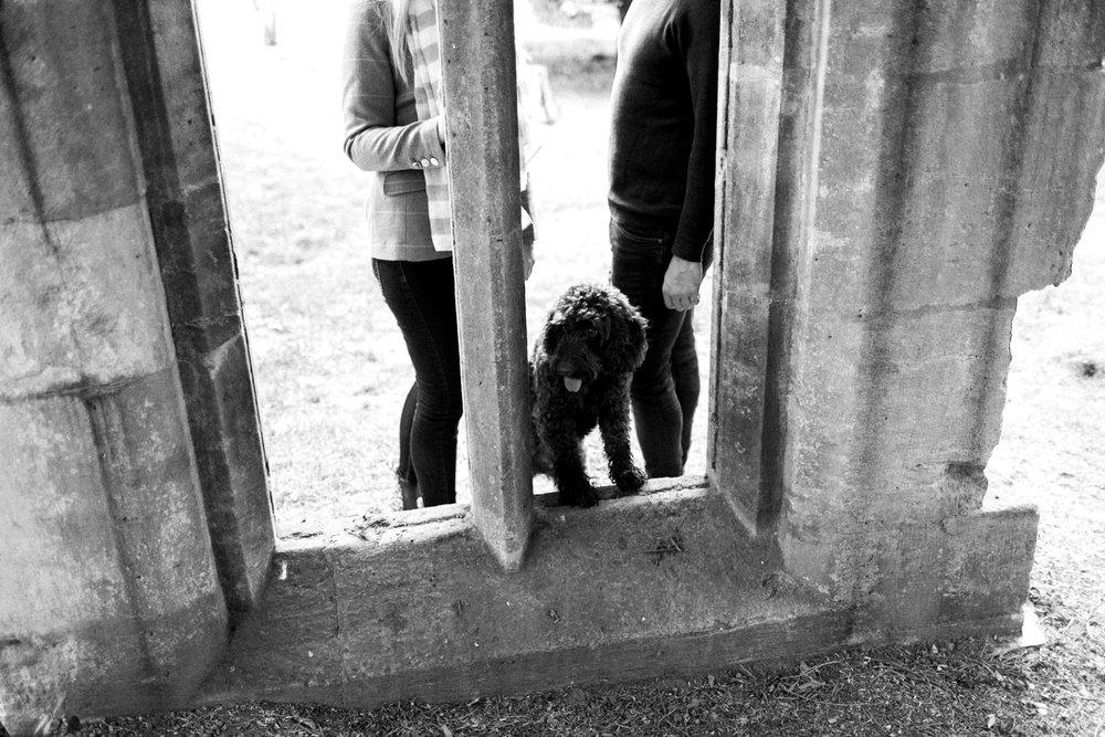Rachel + Alec Dumbleton Hall shoot -213.jpg