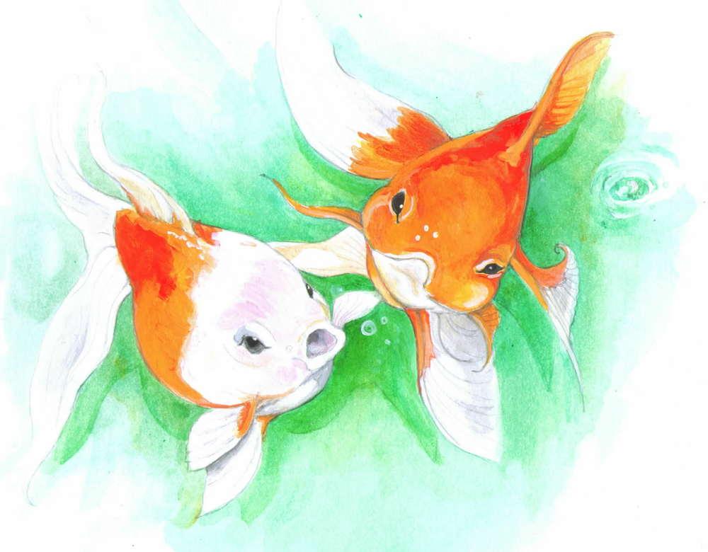 Favorite Pisces