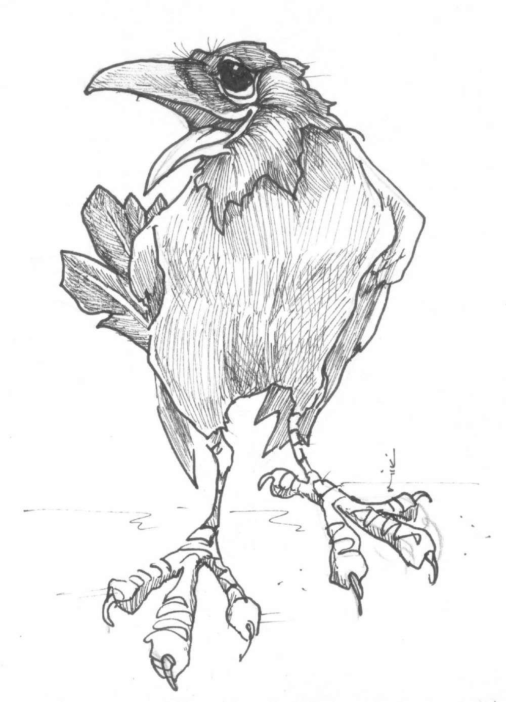 That Raven