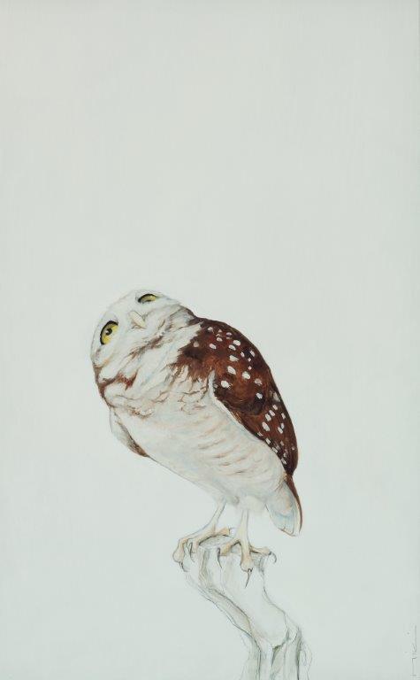 looking up owl cropped.jpg