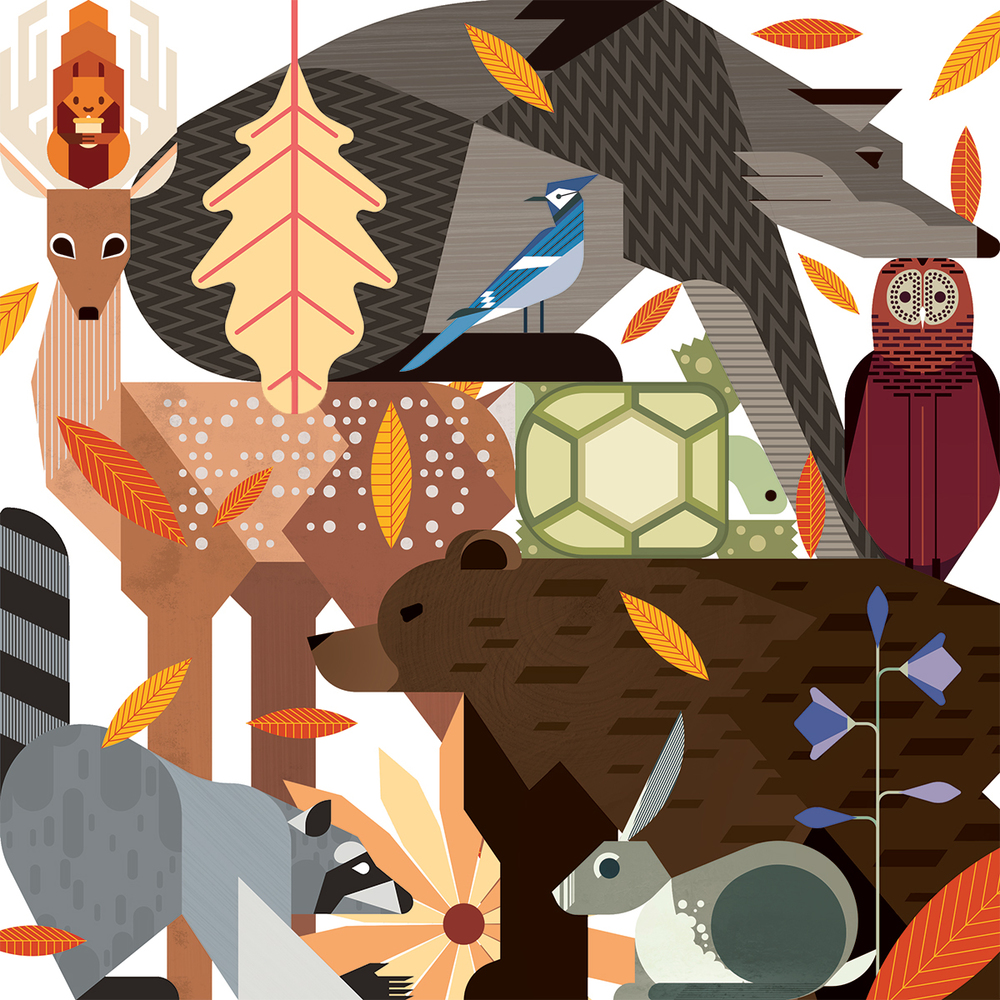 animalcamp_by_victorwong.jpg