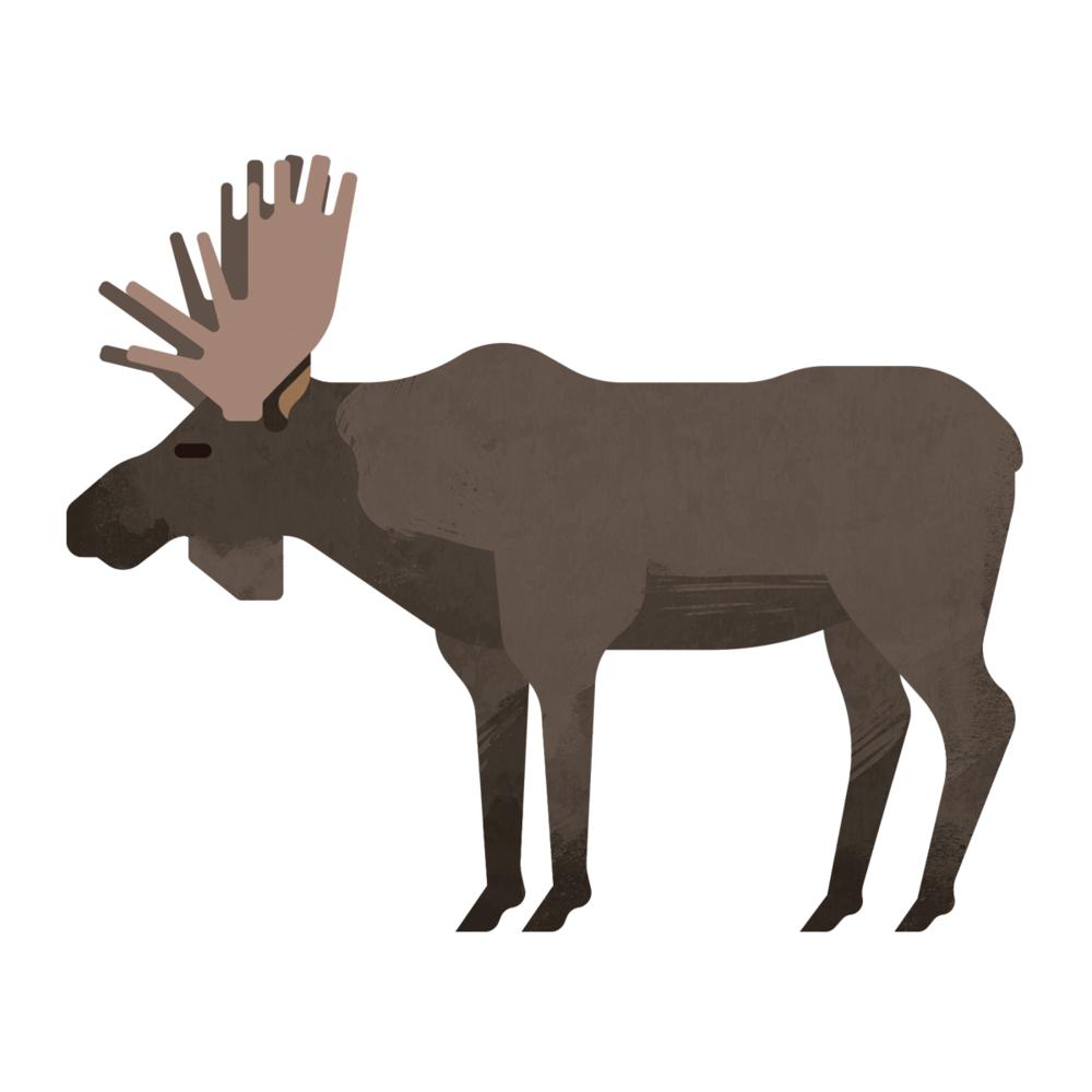 capebreton_poster_animals_moose.png