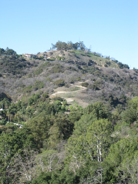 A view from Benedict Canyon looking up to the North end of Beverly Glen.