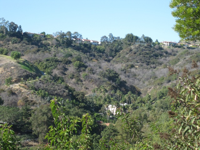 A view looking North at the top of our canyon.