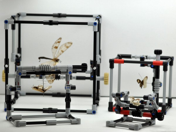 The four different sized manipulators shown for comparison: a Giant-IMp b IMp models with encasing support beams c Open-IMp d Micro-IMp models that are not encased. The specimens in the manipulators are: a Nosa tristis (Hagen, 1853) – Neuroptera: Myrmeleontidae b Perissoneura paradoxa McLachlan, 1871 – Trichoptera: Odontoceridae c Pteronarcys californica Newport, 1848 – Plecoptera: Pteronarcyidae and d Psychopsis coelivaga (Walker, 1853) – Neuroptera: Psychopsidae.