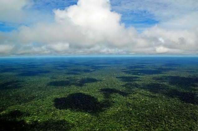 Today, forests like the Amazon exchange massive amounts of CO2 and oxygen with the atmosphere.