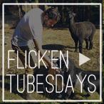 blog headings-Flick'en Tubesdays.jpg
