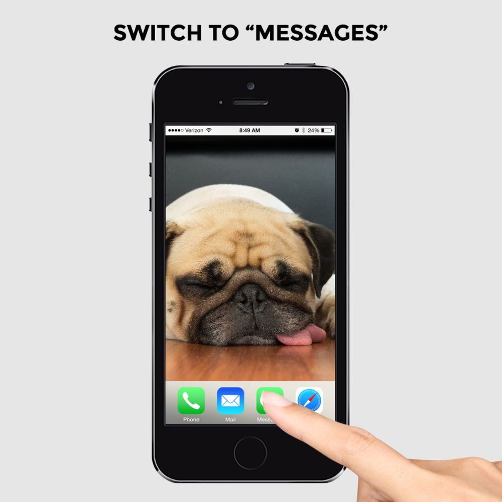 Pug_HowTo_4.png
