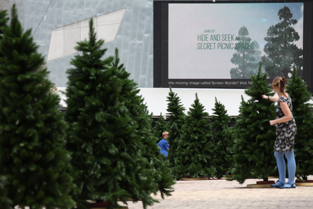 in-the-pines-00.jpg