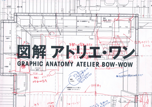 graphic anatomy-1.jpg
