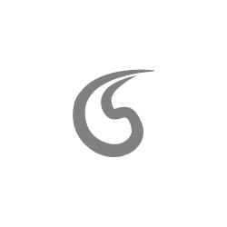 Bonfire_Logo