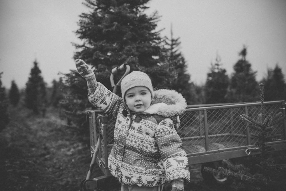 sczebel__evans_2013_christmas-3.jpg