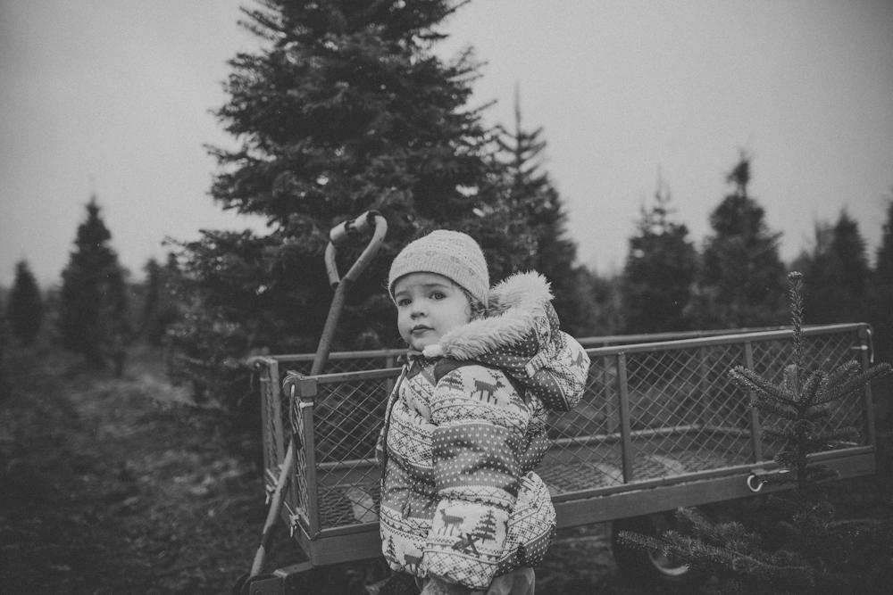 sczebel__evans_2013_christmas-2.jpg