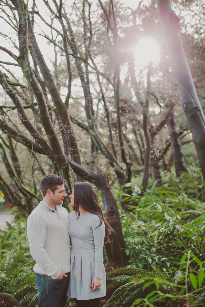 vancouver_wedding_photographers_ron_nikki_engagement-42.jpg