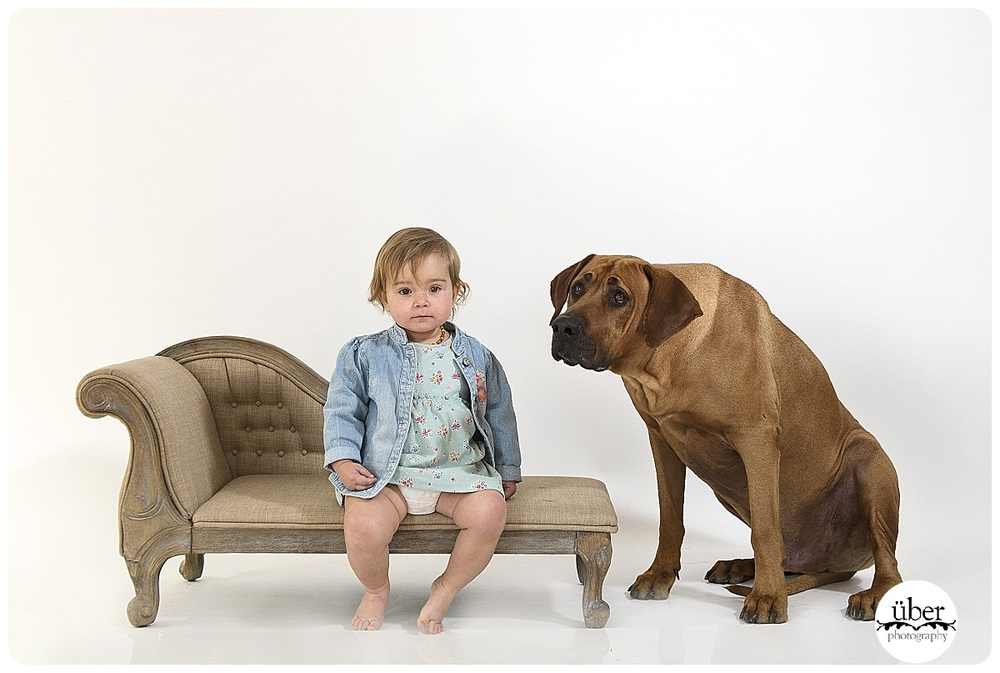 Dogs-and-their-kids