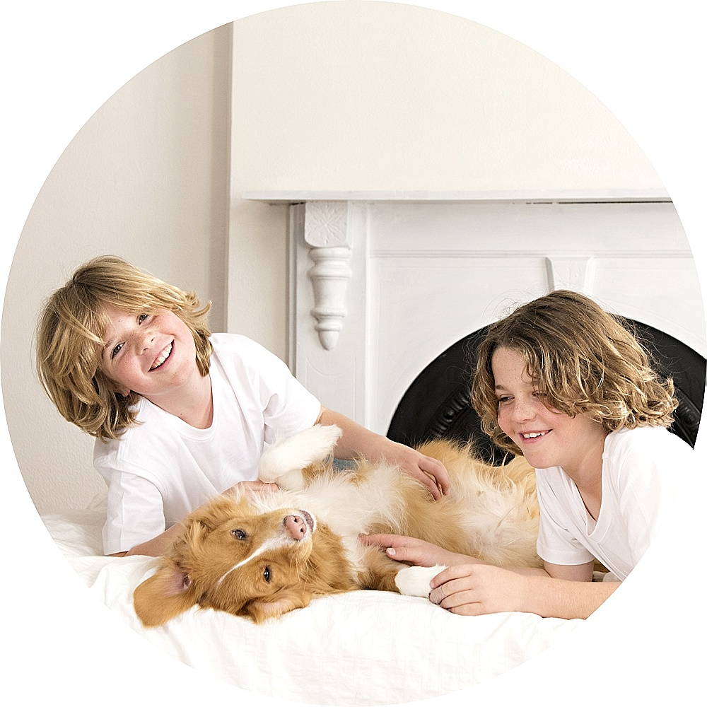 Dogs and their kids