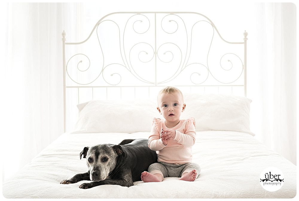 pet-photography-sydney.jpg